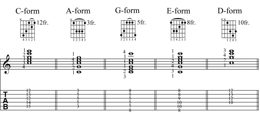 Barre Forms 2