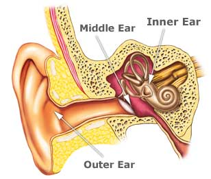 lakeside_audiology_hearing_zone_ear_diagram