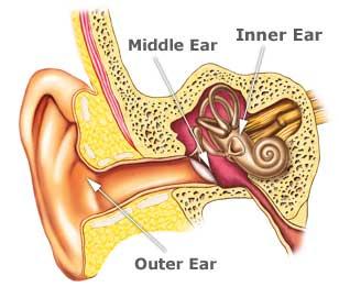 lakeside_audiology_hearing_zone_ear_diagram